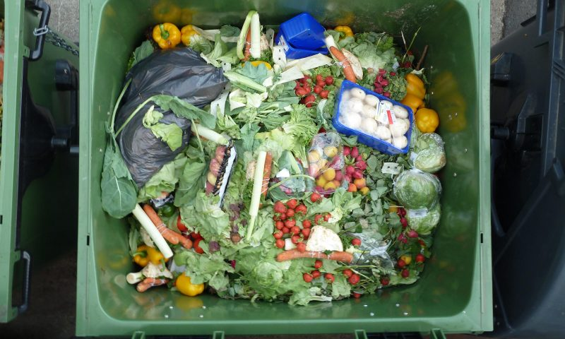 IBM Hackathon winner helps fight rash of wasted food