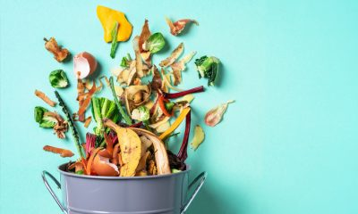 An Easy Guide to Composting